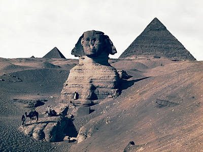 King Tut Photograph - Sphinx Of Egypt - 1867 by Daniel Hagerman