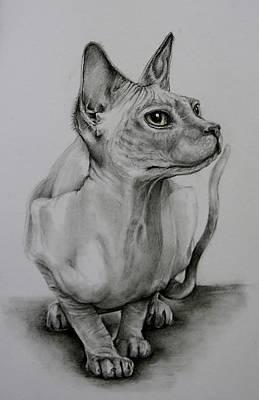 Sphynx Art Print by Jean Cormier