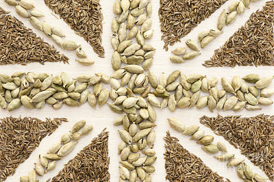 Spice Flag Print by Anne Gilbert