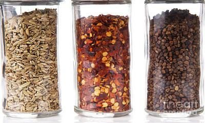 World Forgotten - Spice Jars by Tim Hester