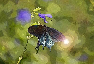 Blue Swallowtail Digital Art - Spicebush Swallowtail II by Suzanne Gaff