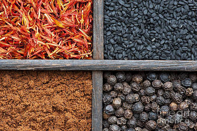 Grid Photograph - Spices Of India Pattern by Tim Gainey