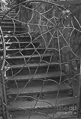 Photograph - Spider And Web Iron Gate Art Prints by Valerie Garner