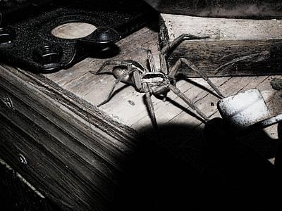 Art Print featuring the digital art Spider B And W by Robert Rhoads