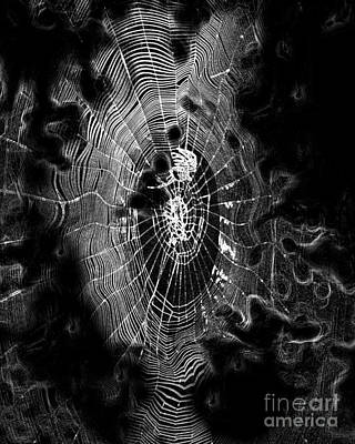 Digital Art - Spider Noir by Third Eye Perspectives Photographic Fine Art