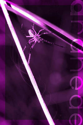 Spider On Sticks Original by Tommytechno Sweden