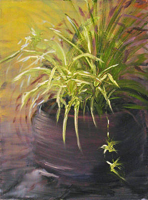 Painting - Spider Plant by Sherry Robinson