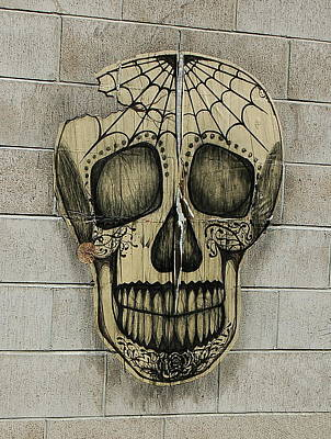 Photograph - Spider Skull by Tamyra Crossley