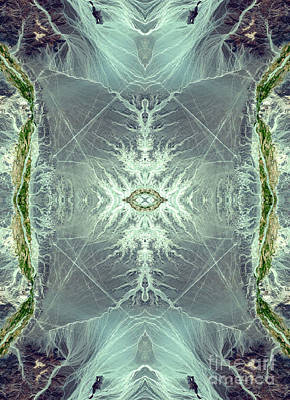 Phytoplankton Digital Art - Spider Web Abstract Ocean Art by Animated Sentiments