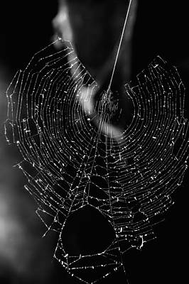 Photograph - Spider Web II by Patrick Boening