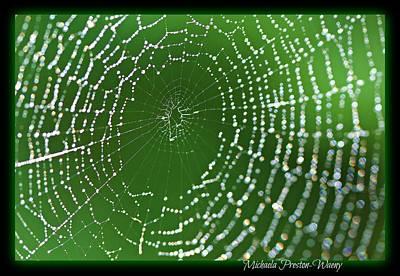 Photograph - Spider Web by Michaela Preston