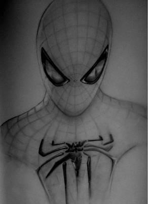 Spiderman Drawing - Spiderman by Chris Vanellis