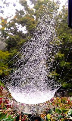 Photograph - Spiderweb Mansion by Kenny Glover