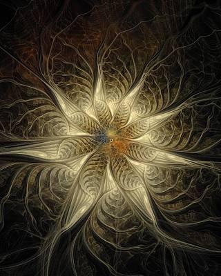 Framed Art Digital Art - Spidery by Amanda Moore