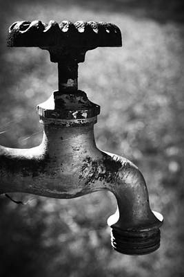 Photograph - Spigot  by Kelly Hazel
