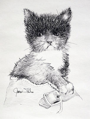 Drawing - Spike by James Skiles
