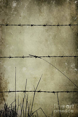 Spikey Wire Art Print by Svetlana Sewell