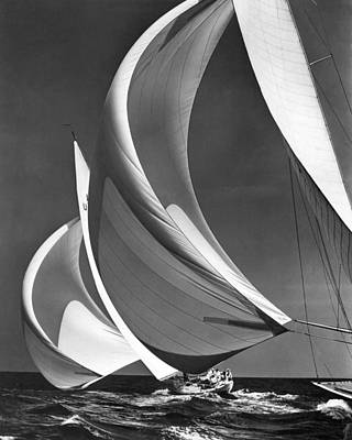 Photograph - Spinakers On Racing Sailboats by Underwood Archives