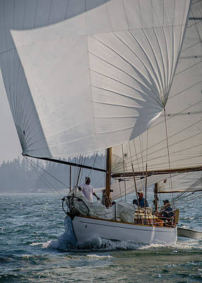 Photograph - Spinnaker Run by Jennifer Kano