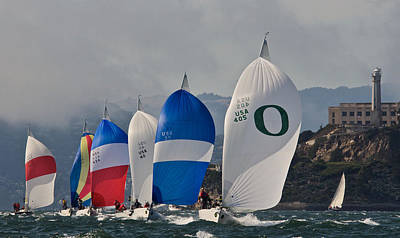 Photograph - Spinnakers On The Bay by Steven Lapkin