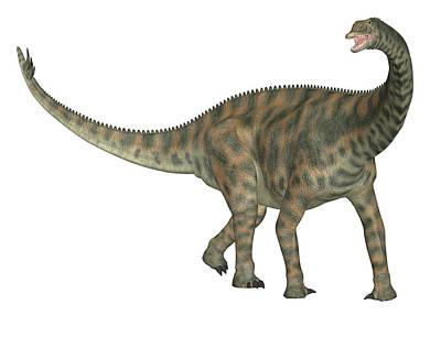 Paleozoology Photograph - Spinophorosaurus Dinosaur by Friedrich Saurer