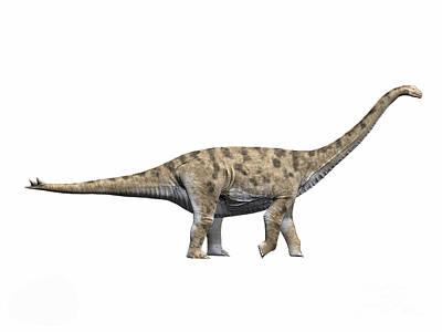 Spinophorosaurus Nigerensis, Middle Art Print by Nobumichi Tamura