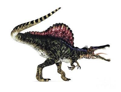 Spinosaurus Dinosaur, Artwork Art Print