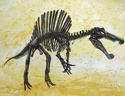 Triassic Digital Art - Spinosaurus Dinosaur Skeleton by Harm Plat