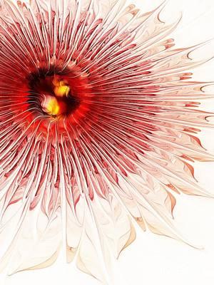 Spiral Digital Art - Spiral Flower by Klara Acel