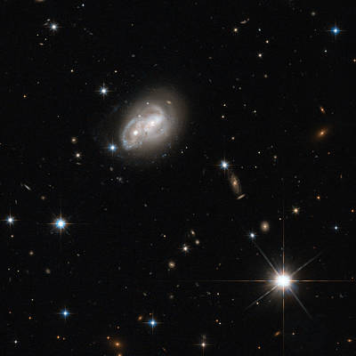 Merging Photograph - Spiral Galaxies Interacting by Science Source