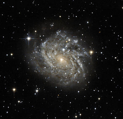 Leda Photograph - Spiral Galaxy Leda 89996 by Science Source