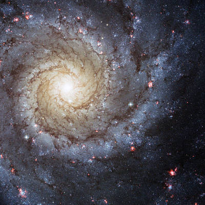 Phantom Photograph - Spiral Galaxy M74 by Adam Romanowicz