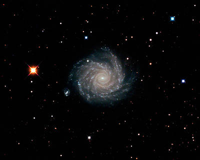 Spiral Photograph - Spiral Galaxy Ngc 1232 by Damian Peach