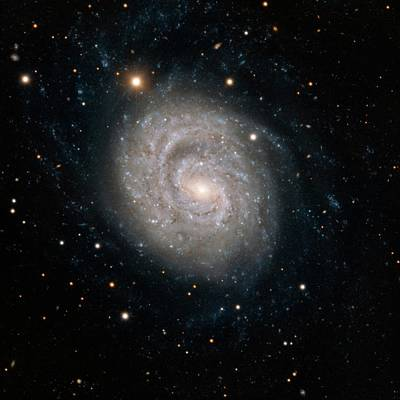 Astrophysics Photograph - Spiral Galaxy Ngc 1637 by European Southern Observatory