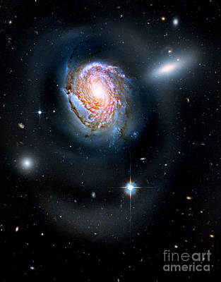 Photograph - Spiral Galaxy Ngc 4911 by Nicholas Burningham