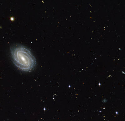 Deep Sky Photograph - Spiral Galaxy Pgc 54493 by Science Source