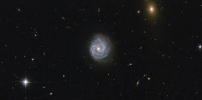Virgo Photograph - Spiral Galaxy by Science Source