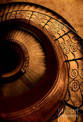 Spirals In Brown Print by Jaroslaw Blaminsky