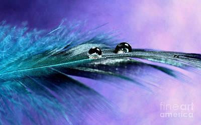 Nature Abstracts Photograph - Spirit Healing by Krissy Katsimbras
