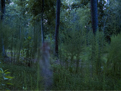Photograph - Spirit In The Forest by Heather S Huston