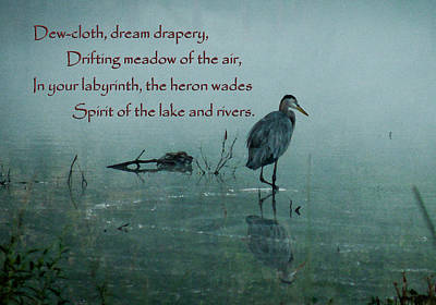 Photograph - Spirit Of The Rivers by Deborah Smith