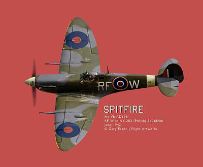 Digital Art - Spitfire Portrait - Commissions Welcome by Gary Eason