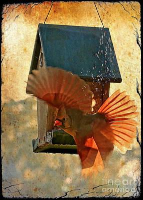 Antique Look Photograph - Splash And Dash - Digital Art by Carol Groenen