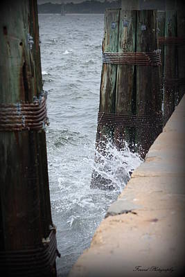 Photograph - Splash by Debra Forand