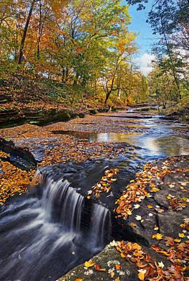 Photograph - Splendor At Skillet Creek by Leda Robertson