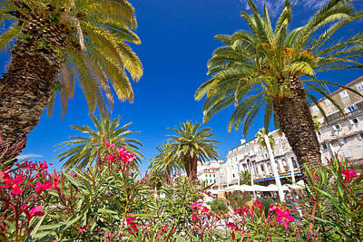 Photograph - Spli Palm Waterfront And Diocletian's Palace by Brch Photography
