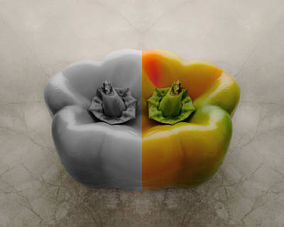 Photograph - Split Pepper by Don Spenner