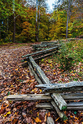Photograph - Split Rail Fence by Ron Pate