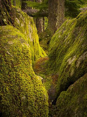Photograph - Split Rock by Joe Doherty