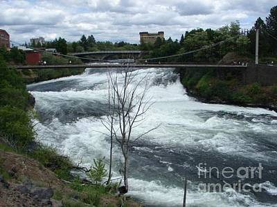Photograph - Spokane Falls Waterfall Spokane Washington State by Windy Mountain